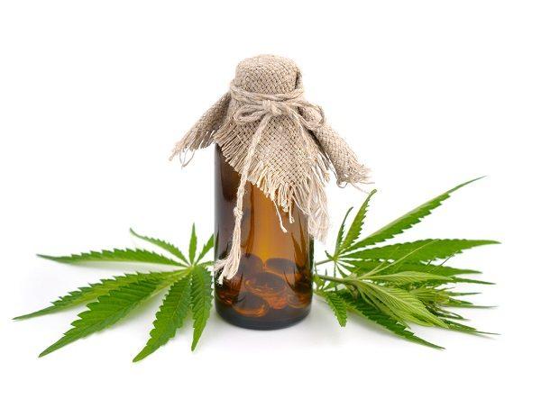 Foliage of hemp with pharmaceutical bottle.
