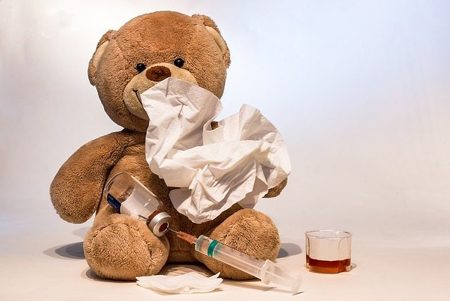 Bear with the Flu