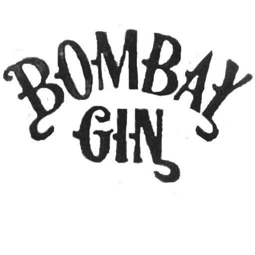Bombay Gin Photo