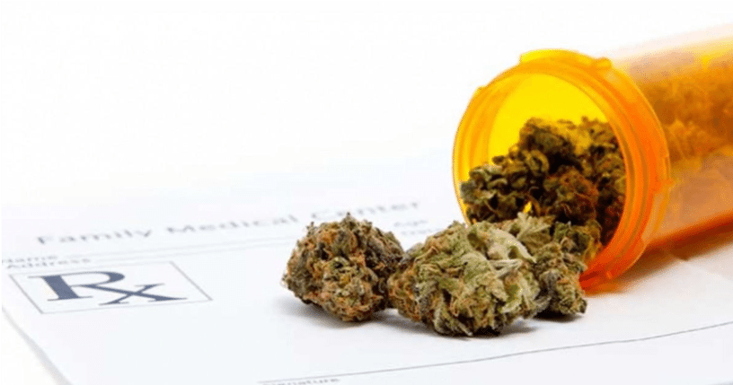 Cannabis for Seniors Feature