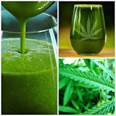 juicing cannabis feature