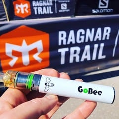 Bee-Nails_GoBee Portable Vaporizer