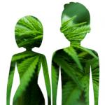 Body made up hemp