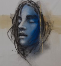 La Nature en Silence, Andre Desjardins