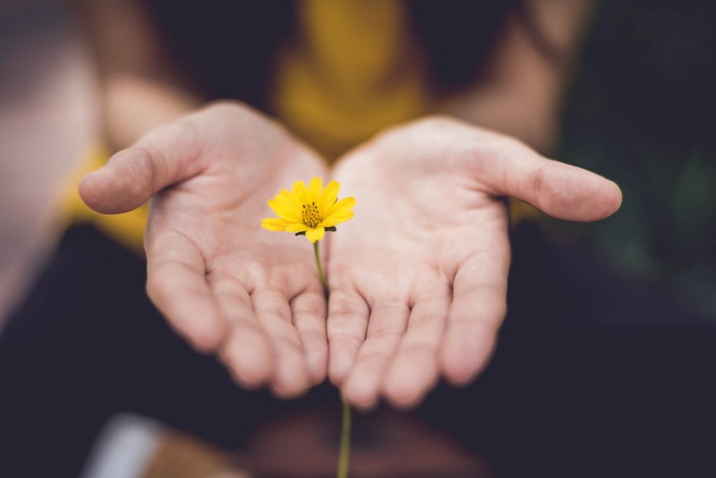 Hands to Flower