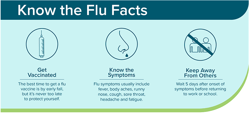 flu myths