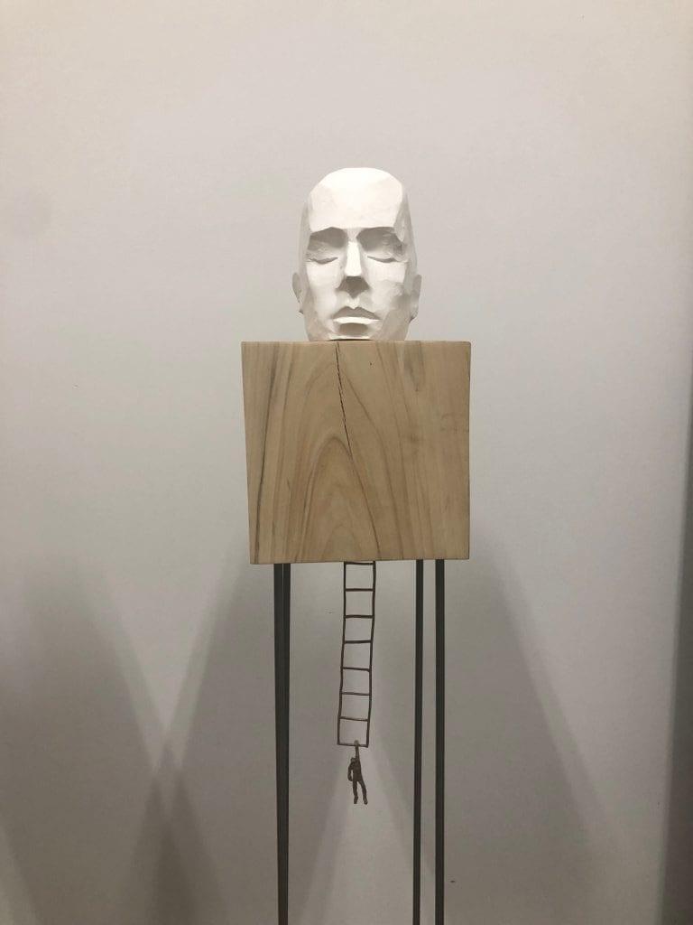 head w ladder