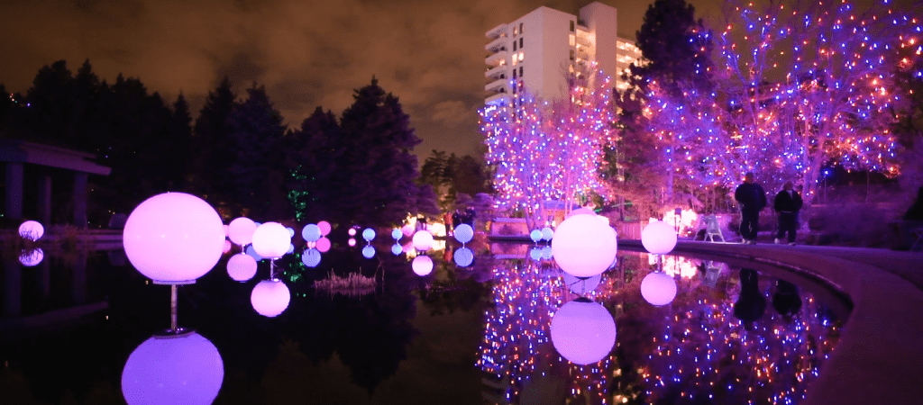 Blossom of Lights