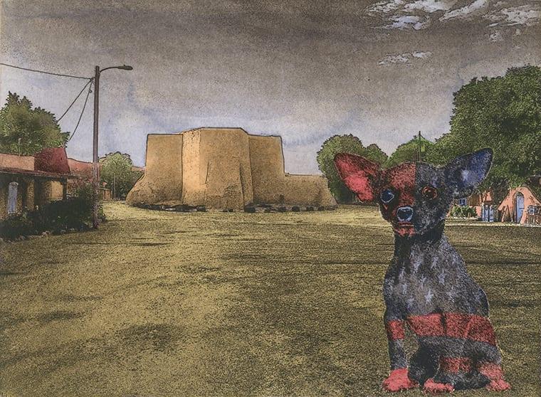 All American Chihuahua at Ranchos WEB